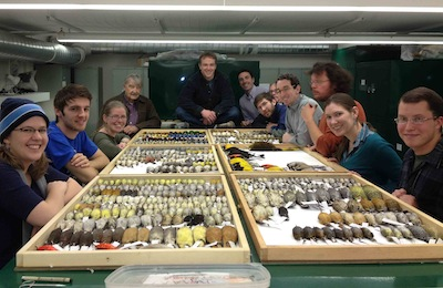 The Bird Collection: A Resource for Biodiversity Research and Teaching at the Museum of Southwestern Biology